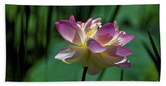 Beach Towel featuring the photograph Petty Pink Lotus by Paul Mashburn