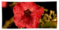 Petunia After Rain Beach Towel
