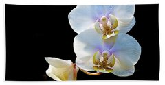 Phalaenopsis Culican #1 Nobby's Amy Shin Hua Beach Towel