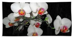 Phalaenopsis Orchids Beach Sheet