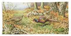 Pheasants With Blue Tits Beach Towel by Carl Donner