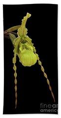 Phragmipedium Richteri Orchid Beach Towel