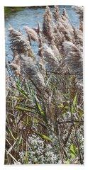 Phragmites -  Beach Towel
