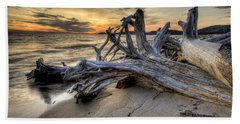 Beach Towel featuring the photograph Pic Driftwood by Doug Gibbons