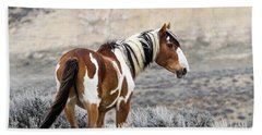 Picasso - Wild Mustang Stallion Of Sand Wash Basin Beach Sheet