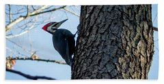 Beach Towel featuring the photograph Pileated Woodpecker  by Ricky L Jones