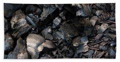 Pine Cone Cinders Beach Towel