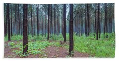 Beach Towel featuring the photograph Pine Grove And Fog In Charlotte Nc Panorama by Ranjay Mitra