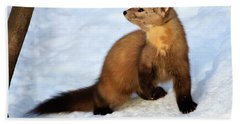 Pine Martin Beach Towel by Gary Hall