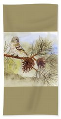 Pine Siskin Among The Pinecones Beach Towel by Thom Glace
