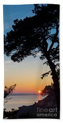 Beach Towel featuring the photograph Pine Tree by Delphimages Photo Creations