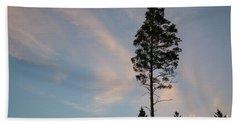 Pine Tree Silhouette Beach Sheet