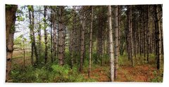 Pine Trees Of Whitetail Woods Park Beach Sheet