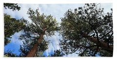 Pines In The Sky Beach Towel