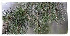 Pines Of Winter Beach Towel by Jewels Blake Hamrick