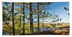 Beach Towel featuring the photograph Pines On Sunny Cliff by Elena Elisseeva