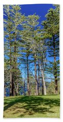 Beach Towel featuring the photograph Pines by Werner Padarin