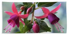 Pink And Purple Fuchsia Beach Towel by Terence Davis
