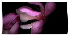 Pink And White Magnolia In Silhouette Beach Towel