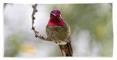Pink Anna's Hummingbird Beach Towel