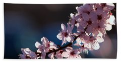Pink Blossoms Beach Sheet by Don Gradner