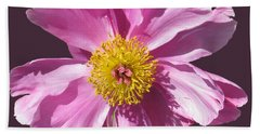 Pink Burst Beach Towel