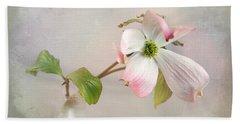 Pink Cornus Kousa Dogwood Blossom Beach Towel by Betty Denise