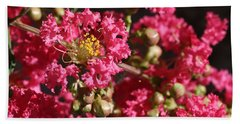 Pink Crepe Myrtle Flowers Beach Sheet