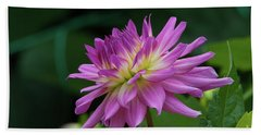Pink Dahlia Beach Towel