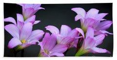 Pink Fairy Lilies Beach Sheet