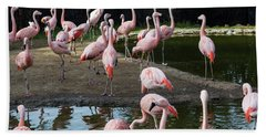 Pink Flamingos Beach Towel by Suzanne Luft