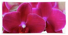 Red Orchid Beach Sheet