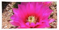 Pink Hedgehog Flower Beach Towel