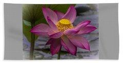 Pink Lotus In Vietnam Beach Sheet by Venetia Featherstone-Witty