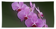 Beach Towel featuring the photograph Pink Orchids by John Haldane
