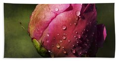 Pink Peony Bud With Dew Drops Beach Towel
