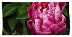 Beach Towel featuring the photograph Pink Peony by Jean Noren