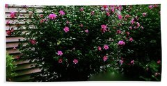 Pink Pizzazz Beach Towel by Frank J Casella