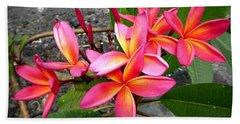 Pink Plumerias Beach Towel by Lori Seaman