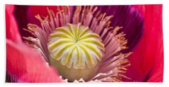 Pink Poppy Flower Beach Sheet