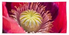 Pink Poppy Flower Beach Towel