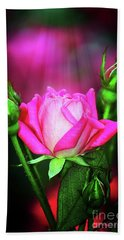 Pink Rose Beach Towel by Inspirational Photo Creations Audrey Woods