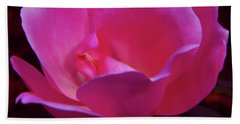 Pink Rose Beach Towel