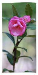 Pink Rose Flower Beach Towel
