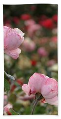 Beach Towel featuring the photograph Pink Roses by Laurel Powell