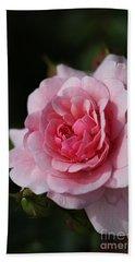 Pink Shades Of Rose Beach Towel