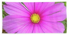 Beach Towel featuring the photograph Pink by Terri Harper