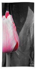 Pink Tulip Beach Sheet