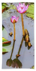 Pink Water Lilies In A Pond Beach Towel
