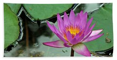 Beach Towel featuring the photograph Pink Water Lily by Judy Vincent